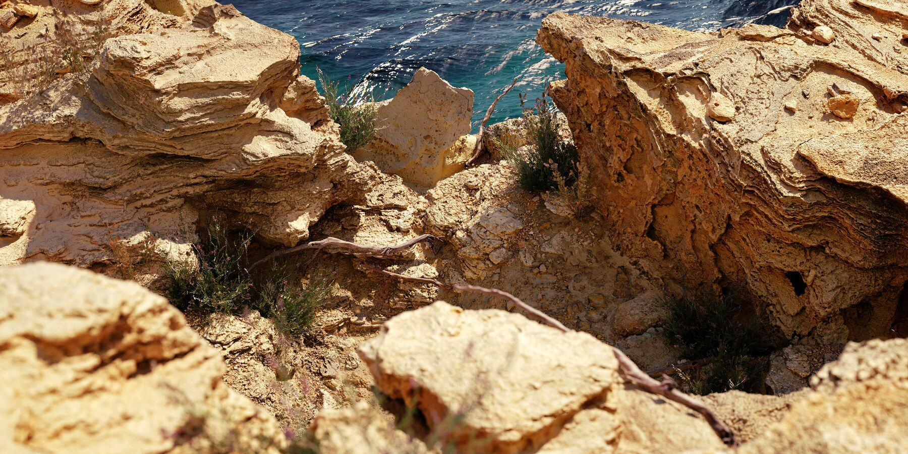 Photoscanned 3D digital nature scans rocks and plants of Formentera for creating a rendered rocky 3D coast scene.